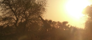 An atmospheric start