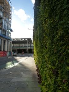 A wall of greens!  (taken from Goods Way looking at the junction with Camley St / Pancras Rd)