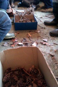 Materials for the Forest Schools session