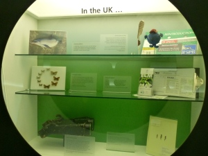 Part of the NHM ecology section - some of the conservation work done in the UK