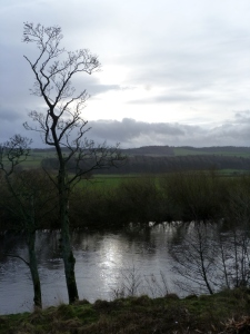 The River Ure (taken from roadside)