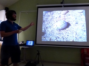 Morgan talks about Little Tern eggs, Chesil Centre