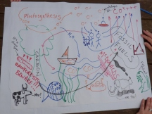 Our carbon cycle, with artistic license.