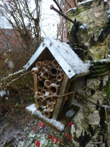 No bees in the this snow!