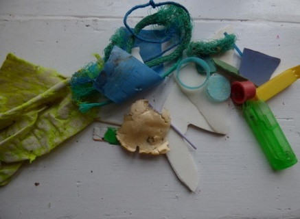 Marine Litter at Charmouth