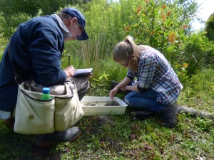 Phil Ward and I examining lake invertebrates