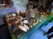 The touch table at RSPB Arne