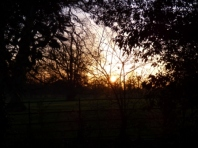 Sunset at Wimpole
