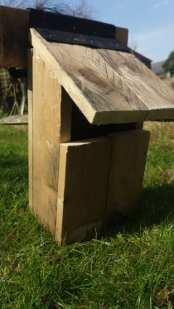 The finalised bird box